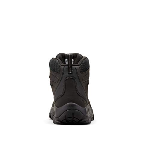 Columbia mens Newton Ridge Plus Ii Waterproof Hik...